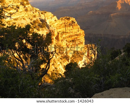 Glowing walls of the Grand Canyon at sunrise