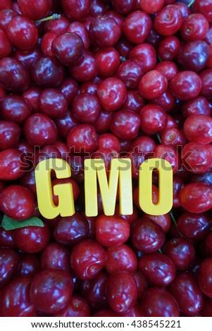 gmo concept - stock photo