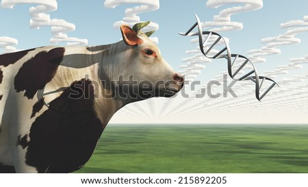 GMO Cow Question - stock photo