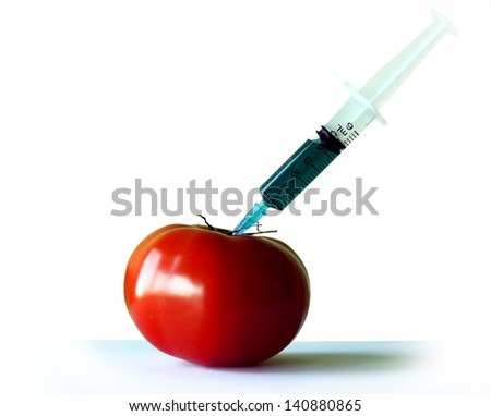 GMO tomato - stock photo