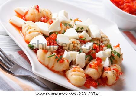 gnocchi with mozzarella and tomato sauce on a plate macro. horizontal   - stock photo