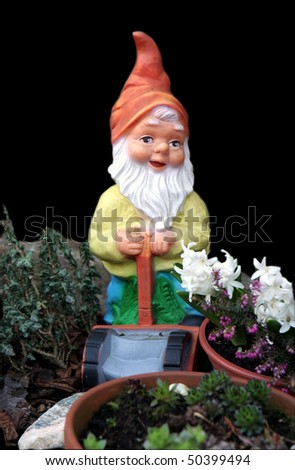 Gnome - stock photo