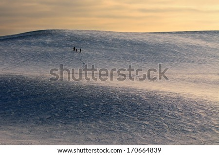 go back to antarctic  - stock photo