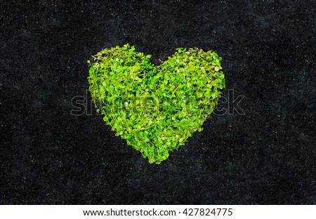 Go green. A green heart on black soil background. Love nature. Protect nature. Sustainable development. CSR. Corporate social responsibility - stock photo