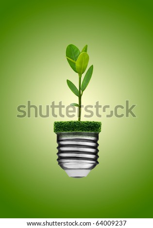Go green concept. Light bulb and plant.