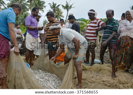 Goa, India - November 5, 2015 - Fishermen catching fishes the traditional way  sharing the catch and bargaining