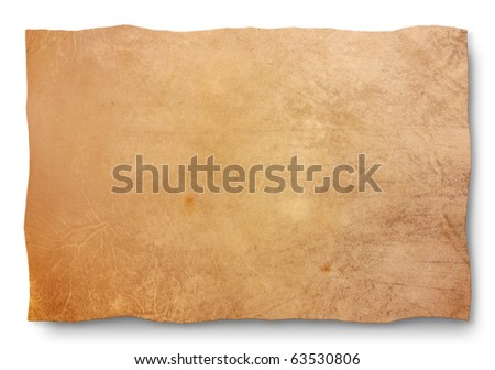 goat skin parchment - blank sheet for map and old banner - empty leather texture for sign, edict, manuscript - stock photo