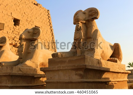Goat statues in the Avenue of Sphinxes at the entrance of Karnak in Luxor Egypt,  Africa