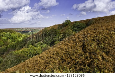 Goathland, Yorkshire, UK. view of the rolling landscape near West Beck in the heart of the North York Moors National Park showing ferns, trees, and hills during autumn (fall). - stock photo