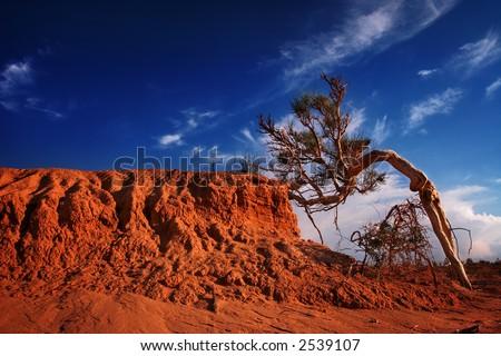 Gobi desert - stock photo