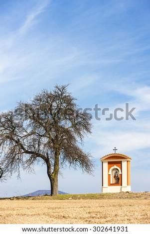 God's torture in Kokorin Region, Czech Republic - stock photo