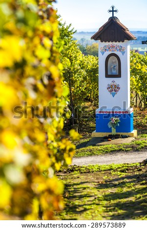God's torture with vineyard near Nechory, Czech Republic - stock photo