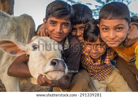 GODWAR REGION, INDIA - 12 FEBRUARY 2015: Four boys from Rabari tribe and calf. Loss of tradition gains pace from every new generation. Rabari or Rewari are an Indian community in the state of Gujarat. - stock photo