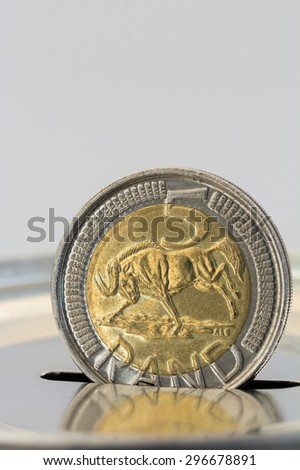 gold and silver minted  five rand coin going into a savings tin or piggy bank white and silver reflection - stock photo