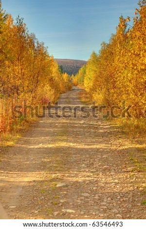 Gold autumn on North Urals