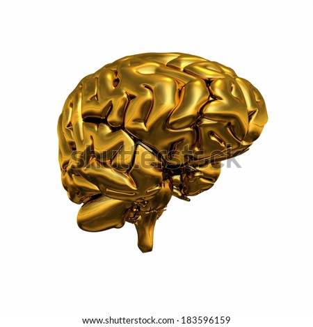 Gold brain isolated 6