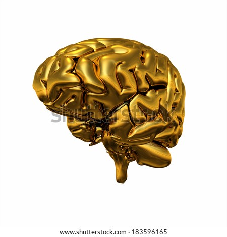 Gold brain isolated 1