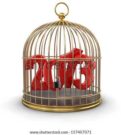 Gold Cage with 2013 (clipping path included) - stock photo
