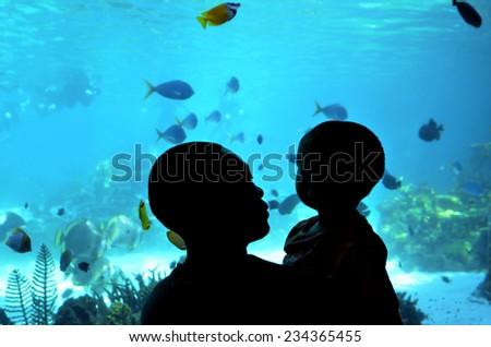 GOLD COAST, AUS -  NOV 06 2014:Visitors in Sea World Gold Coast Australia.It's sea animals theme park that promote conservation education, rescue and rehabilitation sick, injured or orphaned wildlife. - stock photo