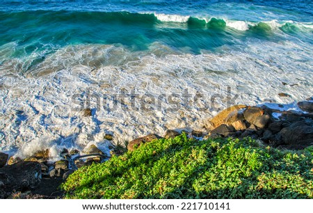 Gold Coast, Australia. Beautiful seascape with vegetation. - stock photo