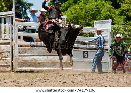 GOLD COAST, AUSTRALIA - JANUARY 26: Unidentified cowboy rides dangerous bull on January 26, 2011 in Gold Coast, Queensland, Australia. The rodeo show was part of Australia Day celebration.