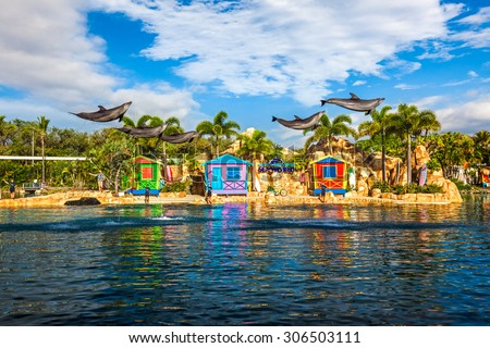 GOLD COAST, AUSTRALIA - MARCH 31, 2015 Dolphin show at Seaworld interacting with people. Multiple doplhins captured at the jamp outside of water. - stock photo