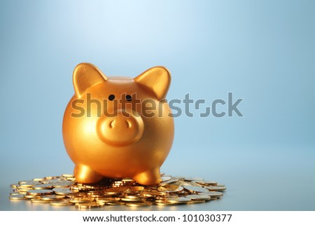 gold coin with with the piggy bank