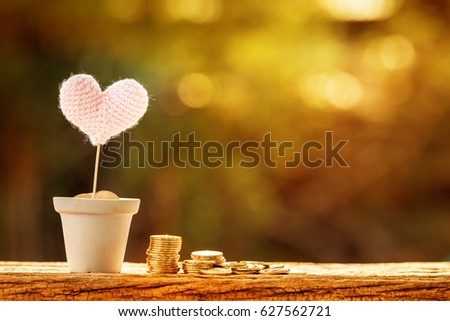 Gold coins in flowerpot with grow up to pink heart for love put on the wooden in the public park, saving for planned investment in the future concept.