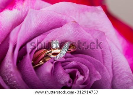 gold diamond engagement ring in beautiful pink rose flower, macro view - stock photo