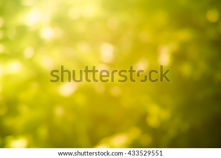 gold effect at sunset, soft background