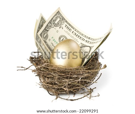 Gold egg and money in a real nest - stock photo