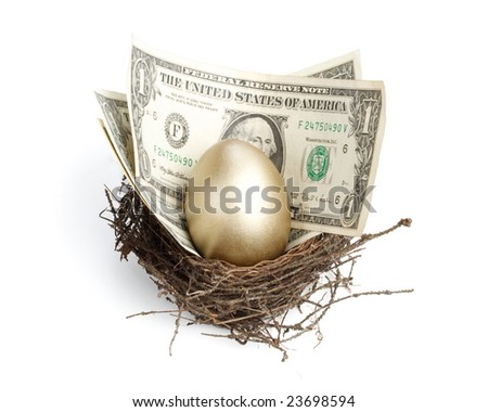 Gold egg and money in a real nest