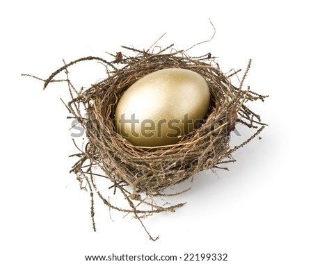 Gold egg in a real nest - stock photo