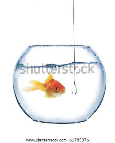 gold fish and empty hook on white background - stock photo