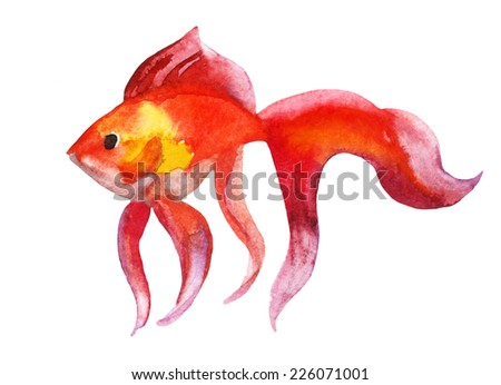 Gold fish - raster watercolor illustration - stock photo