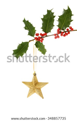 Gold glitter Christmas star hanging from a holly branch isolated against white - stock photo