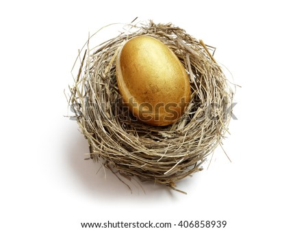 Gold nest egg concept for retirement savings and financial planning - stock photo