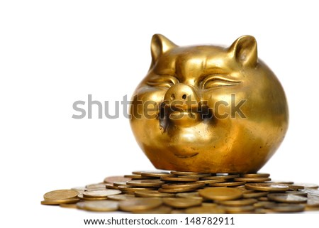 gold pig and money - stock photo