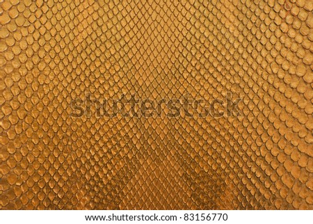 Gold python skin texture background. - stock photo