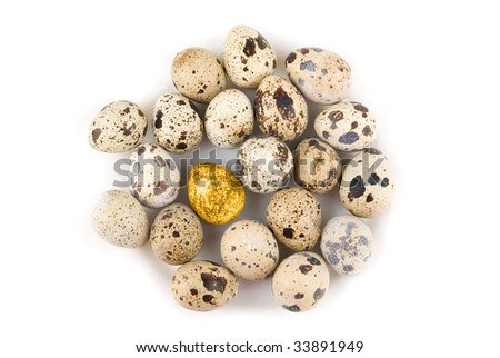 Gold quail egg in many eggs isolated on white - stock photo