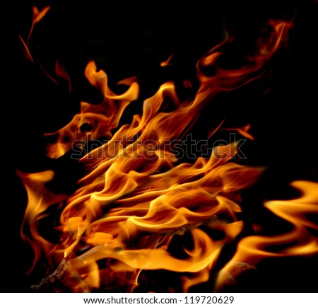 Gold, red and yellow flame, fire on a black background - stock photo