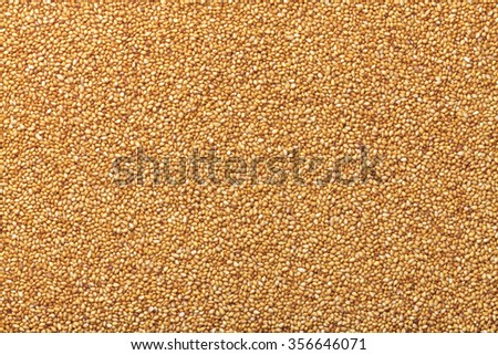 gold sesame - stock photo