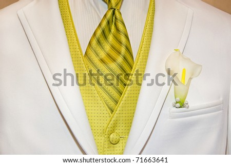 gold tie and vest accenting white tuxedo - stock photo