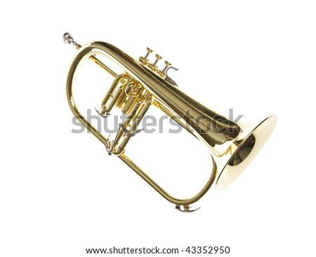 Gold yellow professional flugelhorn with mouthpiece on white isolated