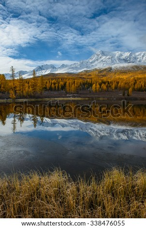 Golden autumn in Altai Russia, mountain Altai, Altai Republic, Kurai steppe, the valley of Eshtykoll, lake Lesnoye