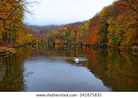Golden Autumn in Dilijan, Armenia