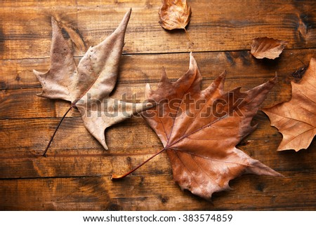Golden autumn leaves on wooden background - stock photo