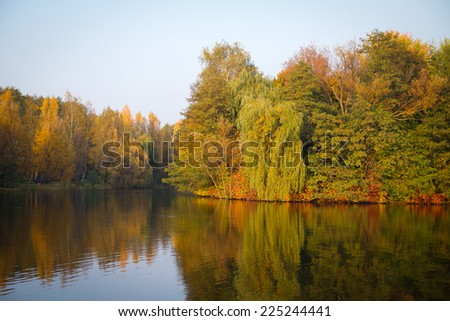golden autumn on the lake. everything was yellow in the fall. - stock photo