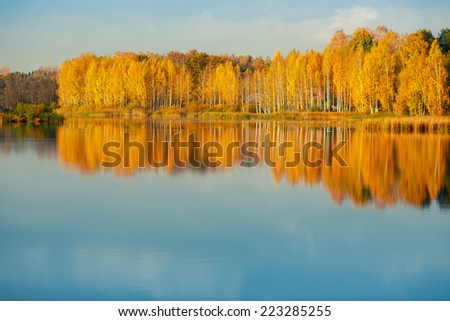 Golden autumn trees at beautiful and calm lake - stock photo