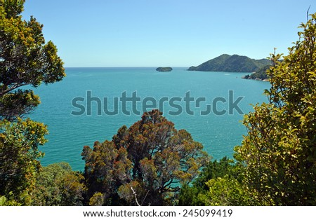 Golden Bay viewed from the lookout at Liger Bay, New Zealand. In the foreground is a giant Pohutukawa Tree in full bloom. - stock photo